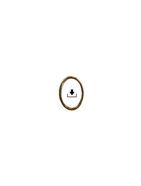 Medaglia ovale in metallo con spilla